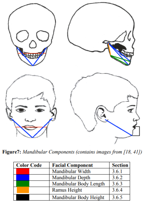 Craniofacial Changes In Children Birth To Late Adolescence Arc Journal Of Forensic Science In this example, the ri. craniofacial changes in children birth