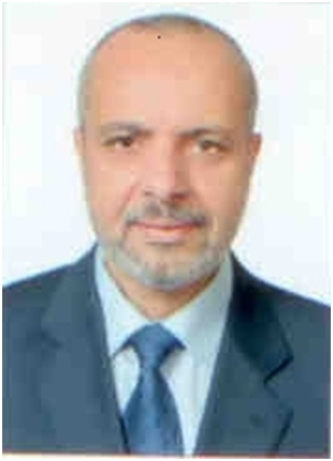 Walid M Hassan